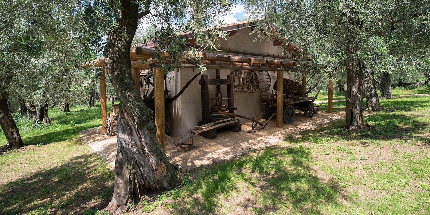Visita e degustazione tradizionale di Malcesine