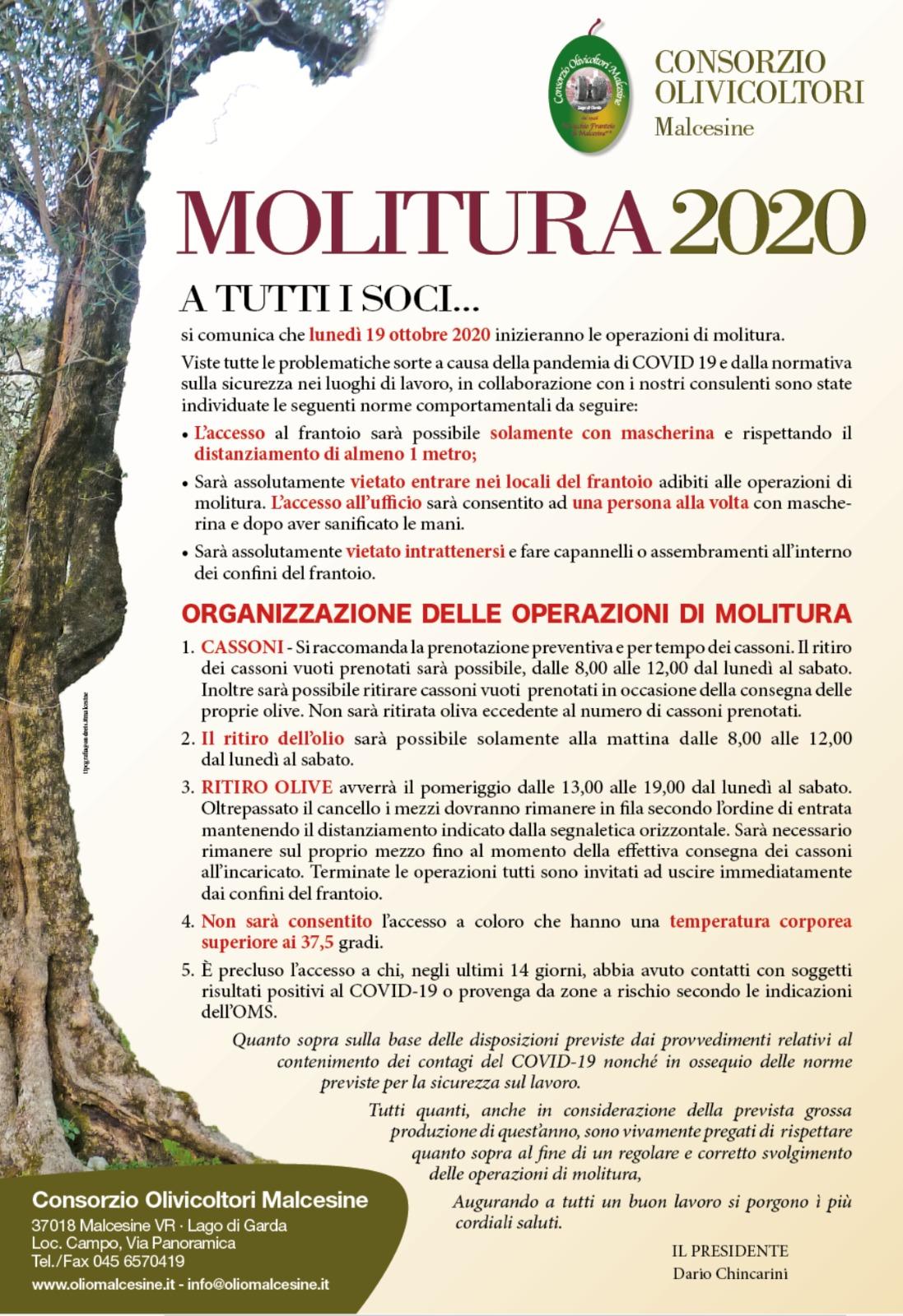 MOLITURA 2020